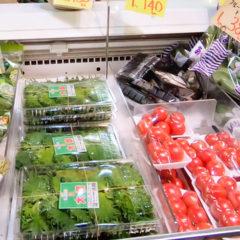武蔵小山に住んでいるなら野菜は「二葉フードセンター」で買うのがおすすめ!