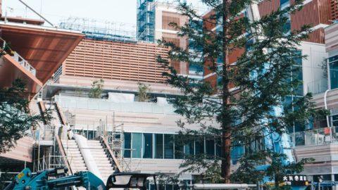 【2019年9月現在】パークシティ武蔵小山 ザ モールに入る予定のテナント情報